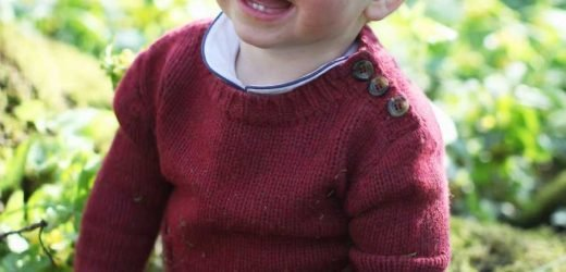 1-Year-Old Prince Louis Shows Off His First Two Teeth in New Birthday Photos (Taken by Mom Kate!)