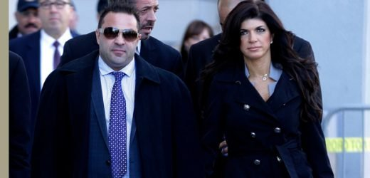 Teresa Giudice Mourns Family Time With Joe After He Loses Deportation Appeal — See Sweet Pic & Message