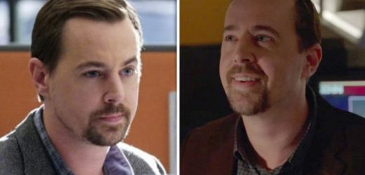 NCIS season 16 spoilers: Will Timothy McGee leave NCIS after shock job offer?