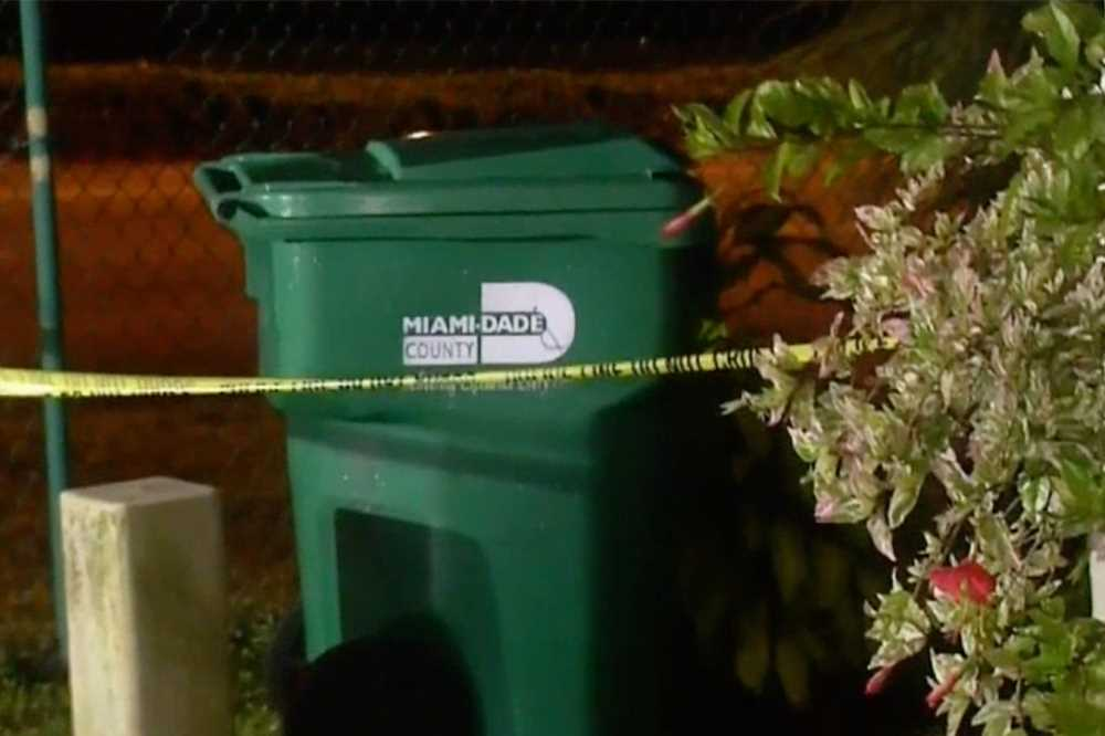 Girl, 3, hospitalized after being beaten with brick inside trash can