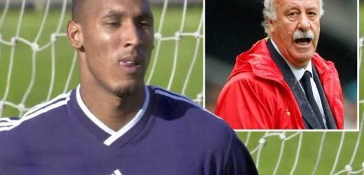 Ex-Madrid boss Del Bosque reveals Anelka refused to train as the team didn't celebrate his goals