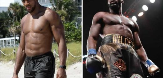 Wilder claims he could face Joshua in blockbuster unification fight 'by the end of the year'