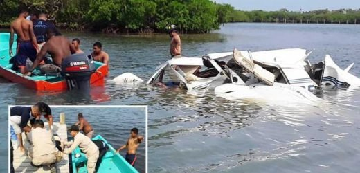 Four US tourists and Canadian pilot killed as light aircraft crashes near Caribbean holiday isle