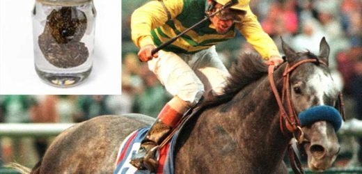 How Kentucky Derby winner's poop ended up being sold for $200 a nugget