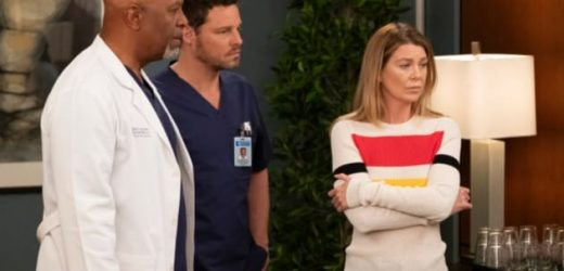 Grey's Anatomy Recap: Meredith, Alex, and Richard Get FIRED