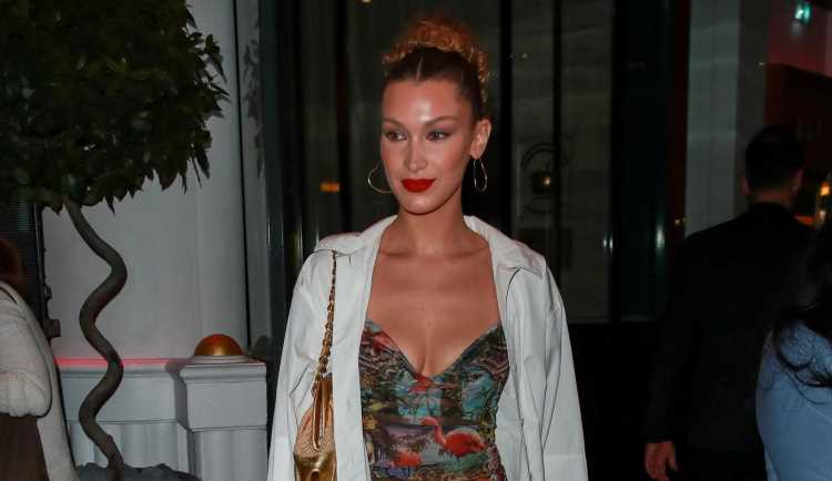 Bella Hadid Rocks Flamingo Shirt While Stepping Out in Cannes