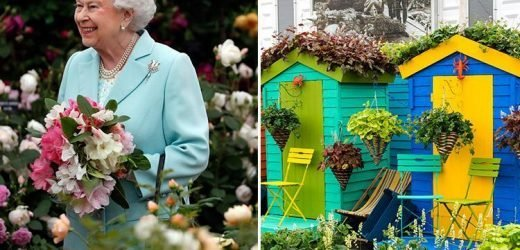 Does the Chelsea Flower Show 2019 have a dress code and should you wear smart or comfortable clothing to the event?