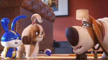 'The Secret Life of Pets 2,' 'Men in Black: International' Land China Releases