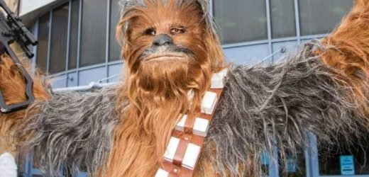 Service dog goes nuts for Chewbacca at Disney World