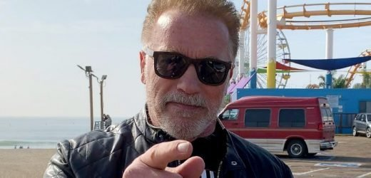 Arnold Schwarzenegger Has Well Wish for 'Idiot' Assailant, Won't Press Charges
