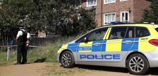 Man in his 20s dies after being shot in west London