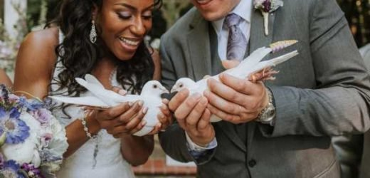 The Psychology Behind Summer Weddings, According To Science & History