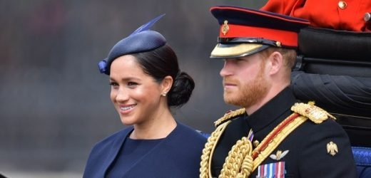Meghan Markle Makes Rare Official Appearance During Maternity Leave