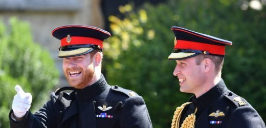The Super Sweet Thing Prince Harry Did For Fans the Day Before His Royal Wedding