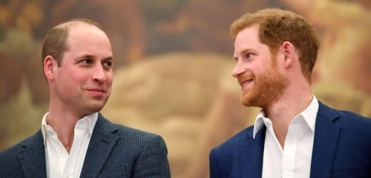 Do Prince William or Prince Harry Have Any Tattoos?