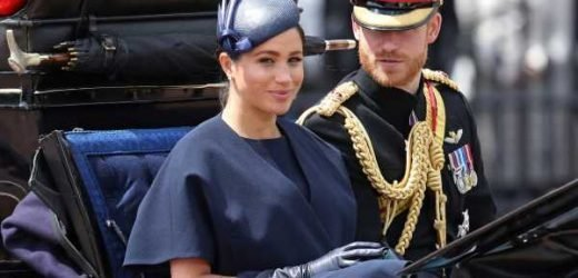 Meghan Markle Just Made Her First Public Apperance As A New Mom For This Royal Tradition