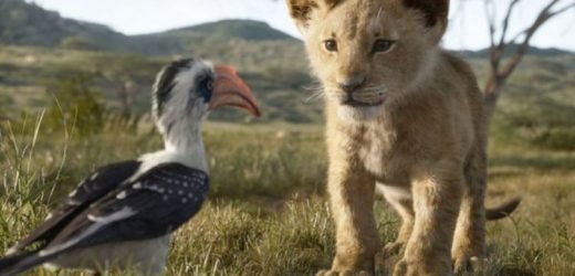The Lion King REVIEWS: THIS is what critics are saying about 2019 'live-action' remake