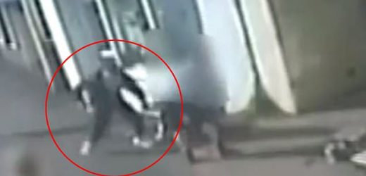 Man is smashed in face with hammer after his dog got in a fight