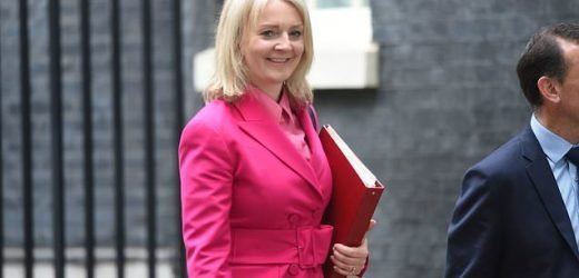 Tories must be more bold about tax cuts for the RICH says Liz Truss