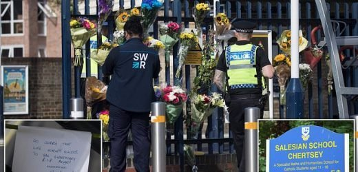 Up to 50 schoolchildren watched as boy was hit by train