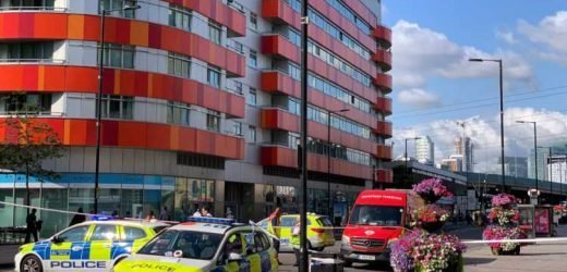 Man in his 20s stabbed in East London hours after teen knifed to death in capital