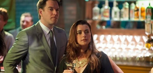 'NCIS': Cote de Pablo Didn't Like Michael Weatherly When They First Met