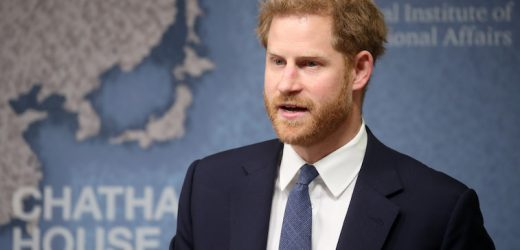 Proof That Prince Harry Is More Like His Mother Than Prince William