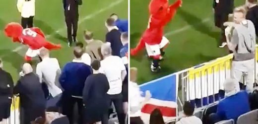 Watch Man Utd mascot Fred the Red get pelted with drinks and abused by Leeds thugs – The Sun
