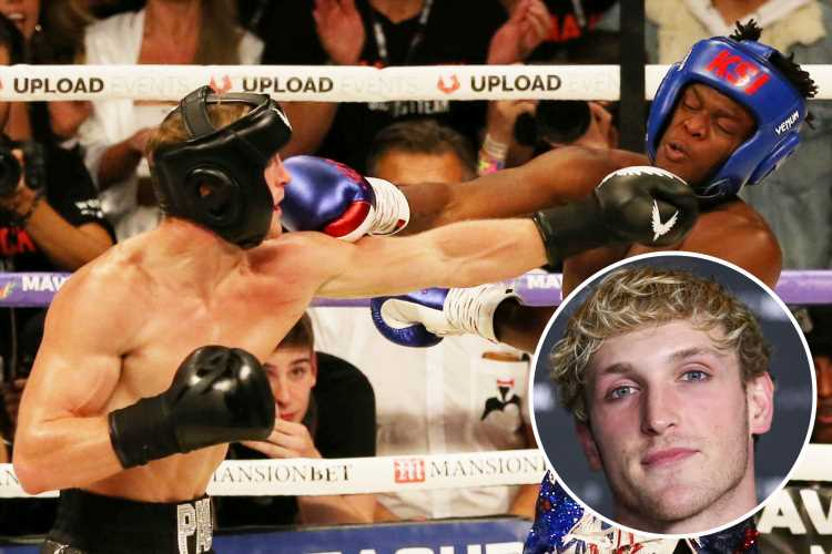 Logan Paul confirms he WILL fight KSI in 2019 with grudge rematch set for Los Angeles – The Sun