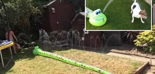 B&M's £3.99 garden snake sprinkler sends hot and bothered shoppers into a frenzy – and it's set to sell out – The Sun