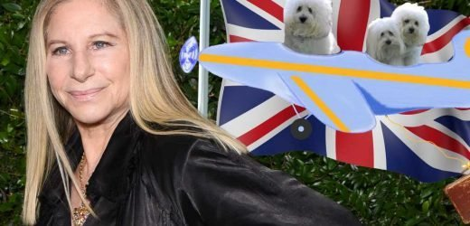 Barbra Streisand flew her dogs to London to watch her perform