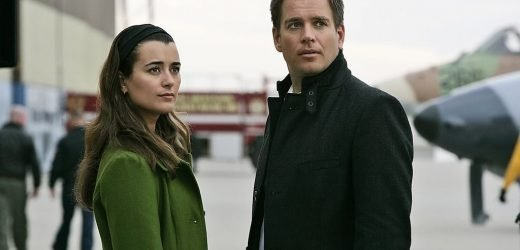 'NCIS': The Weird Way Cote de Pablo and Michael Weatherly First Met