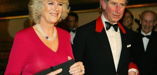 The Surprising Reason Why Prince Charles Finally Married Camilla Parker Bowles