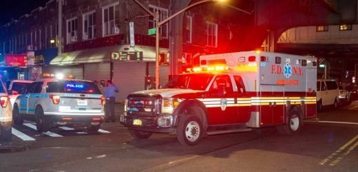 Suspect in custody over fatal Brooklyn subway stabbing