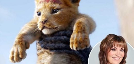 Wipe out hunters or the only lion left to see will be The Lion King's Simba – The Sun