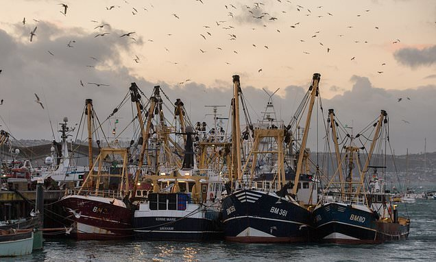 UK 'may not be able to police its own fishing waters after Brexit'