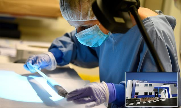 Cyber attack on forensics firm caused backlog of 20,000 samples