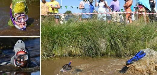 Hundreds take part in the World Bog Snorkelling Championship