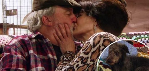 Emmerdale fans in hysterics as farm dog Monty looks disgusted as Zak Dingle kisses Faith in the exact place wife Lisa died