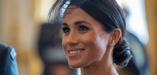 Why Meghan Markle Should Be Allowed to Speak Out: 'She Is a Minor Royal'