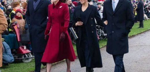 Meghan Markle, Prince Harry, Kate Middleton and Prince William 'should focus on representing theQueenrather than promoting themselves', Ingrid Seward claims