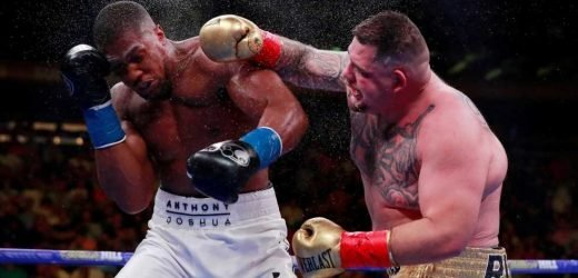 Anthony Joshua claims Andy Ruiz Jr 'ain't that skillful' and KOd him with 'lucky punch from gods' ahead of rematch – The Sun