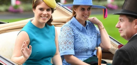 Princess Eugenie's Instagram Followers Are Now Begging Her to Become a Working Royal