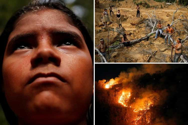Amazon rainforest fires wipe out tribes' homes as they rage out of control through ancient protected forest reserves – The Sun