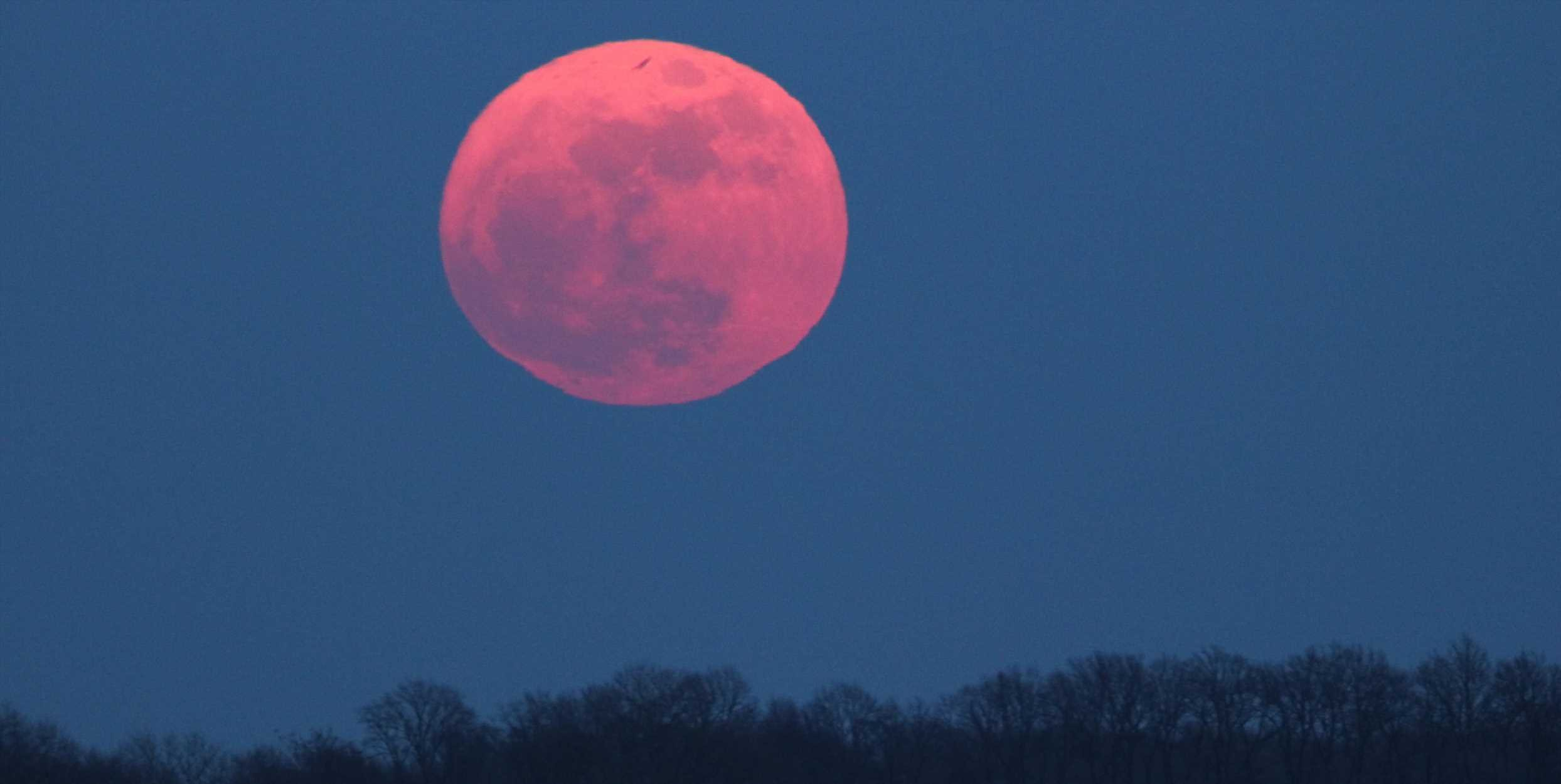The Full Moon Is Bringing You the WILDEST News