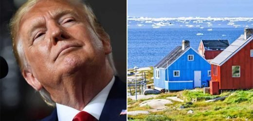 Kudlow confirms Trump wants to buy Greenland