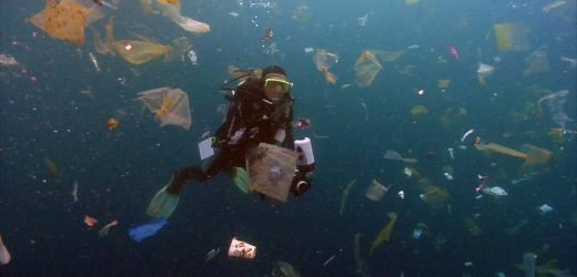 Cleaning up the plastic in the ocean