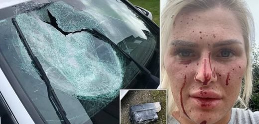 Woman 'lucky to be alive' after lorry step smashes through car window