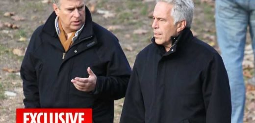 Jeffrey Epstein hired fixer to handle fallout over snap with Prince Andrew in New York – The Sun