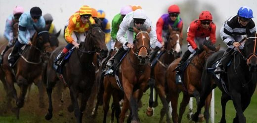 Today's horse racing tips – Wednesday's Betting guide: Templegate and Tom Pepper on Bath, Uttoxeter, Southwell and Chelmsford – The Sun